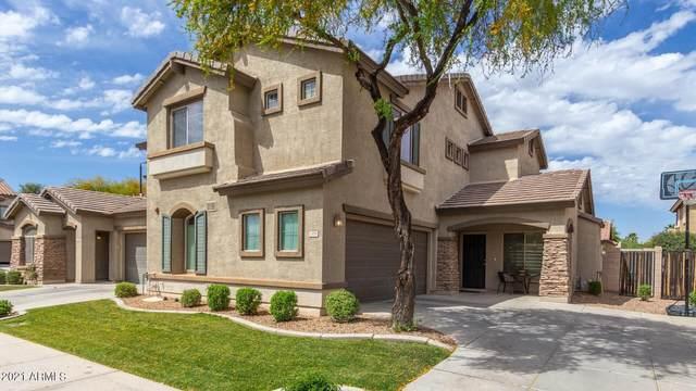 1498 E Elgin Street, Gilbert, AZ 85295 (MLS #6216124) :: Executive Realty Advisors