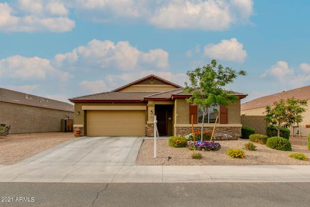 23834 W Cocopah Street, Buckeye, AZ 85326 (MLS #6216151) :: Sheli Stoddart Team | M.A.Z. Realty Professionals