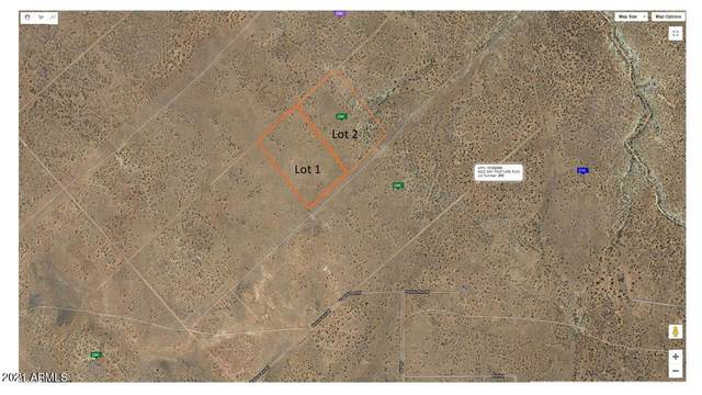 xxxxx Linrich Drive, Overgaard, AZ 85933 (MLS #6216156) :: West Desert Group | HomeSmart