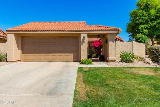 945 N Pasadena #36, Mesa, AZ 85201 (MLS #6216238) :: Yost Realty Group at RE/MAX Casa Grande
