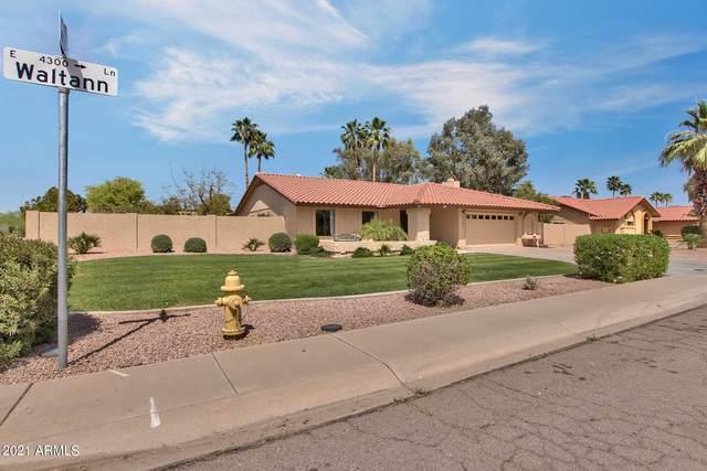 4302 E Waltann Lane, Phoenix, AZ 85032 (MLS #6216285) :: Yost Realty Group at RE/MAX Casa Grande