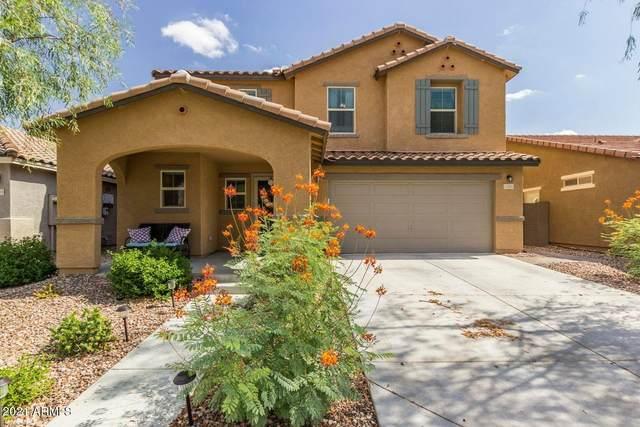 11924 W Honeysuckle Court, Peoria, AZ 85383 (MLS #6216323) :: Executive Realty Advisors