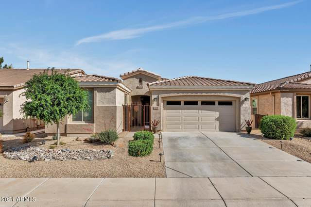4038 E Lodgepole Drive, Gilbert, AZ 85298 (MLS #6216328) :: Long Realty West Valley