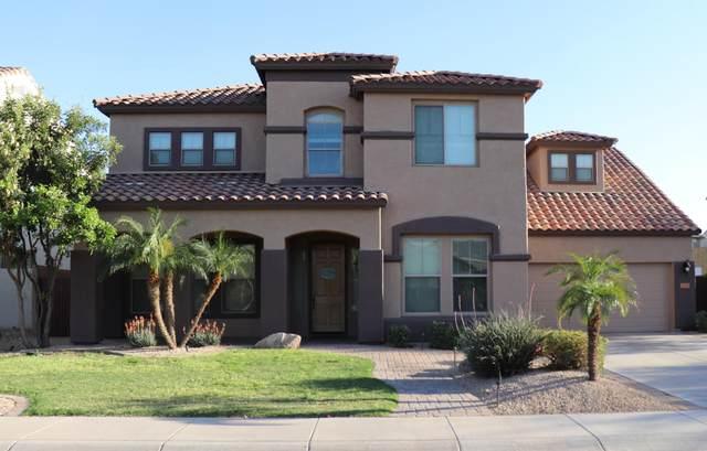 Gilbert, AZ 85298 :: CANAM Realty Group
