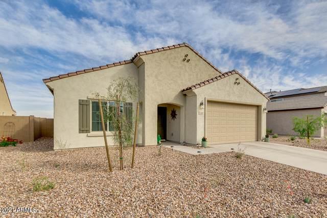 3509 N Astoria Drive, Florence, AZ 85132 (MLS #6216463) :: Yost Realty Group at RE/MAX Casa Grande