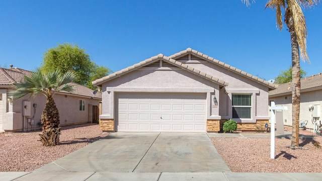 2910 N 130TH Avenue, Avondale, AZ 85323 (MLS #6216470) :: Yost Realty Group at RE/MAX Casa Grande