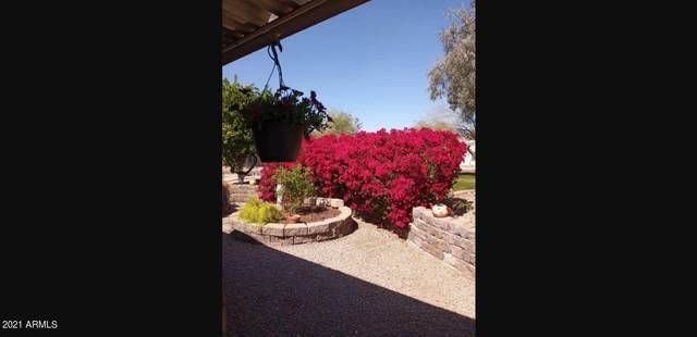 8500 E Southern Avenue #98, Mesa, AZ 85209 (MLS #6216477) :: My Home Group