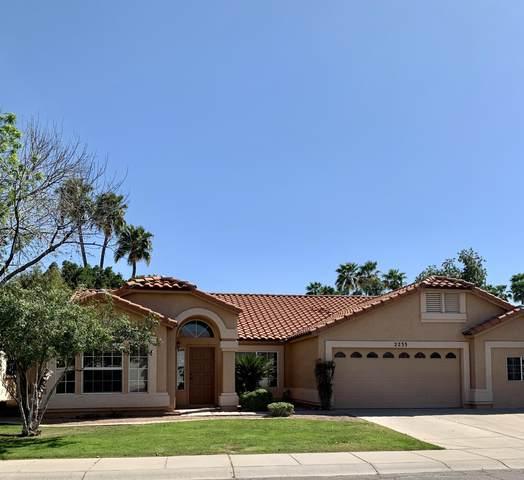 2233 E Santa Cruz Drive, Gilbert, AZ 85234 (MLS #6216486) :: Klaus Team Real Estate Solutions