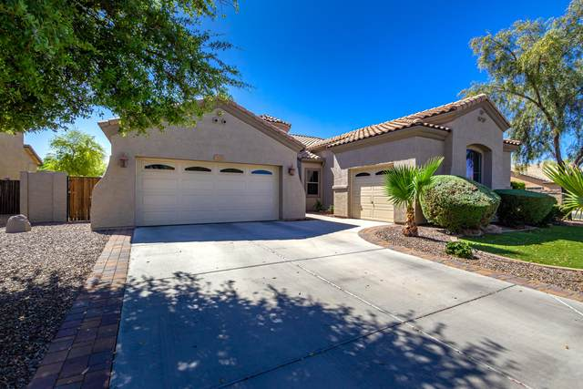 2233 E Jade Court, Chandler, AZ 85286 (MLS #6216490) :: Openshaw Real Estate Group in partnership with The Jesse Herfel Real Estate Group