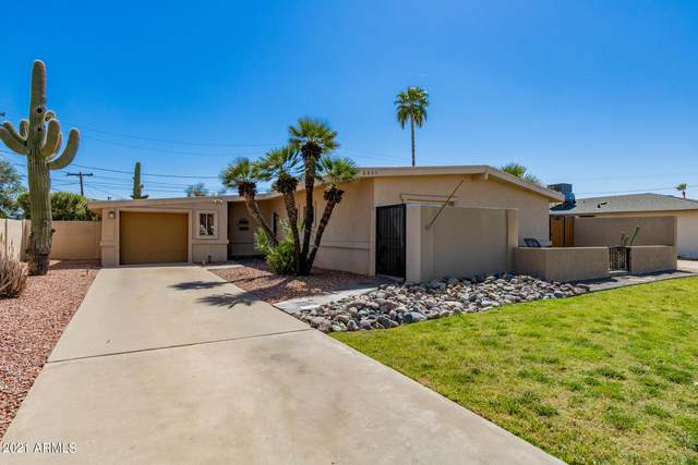 6821 E Edgemont Avenue, Scottsdale, AZ 85257 (MLS #6216510) :: My Home Group