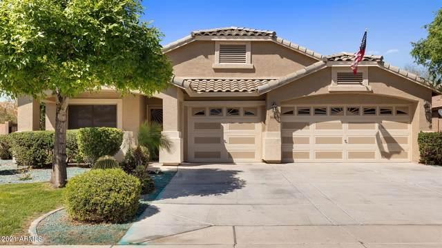 16186 W Hammond Street, Goodyear, AZ 85338 (MLS #6216613) :: Yost Realty Group at RE/MAX Casa Grande