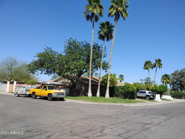1736 W Bluefield Avenue, Phoenix, AZ 85023 (MLS #6216622) :: Yost Realty Group at RE/MAX Casa Grande