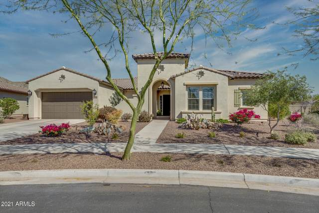 20934 W Colina Court, Buckeye, AZ 85396 (MLS #6216631) :: Long Realty West Valley