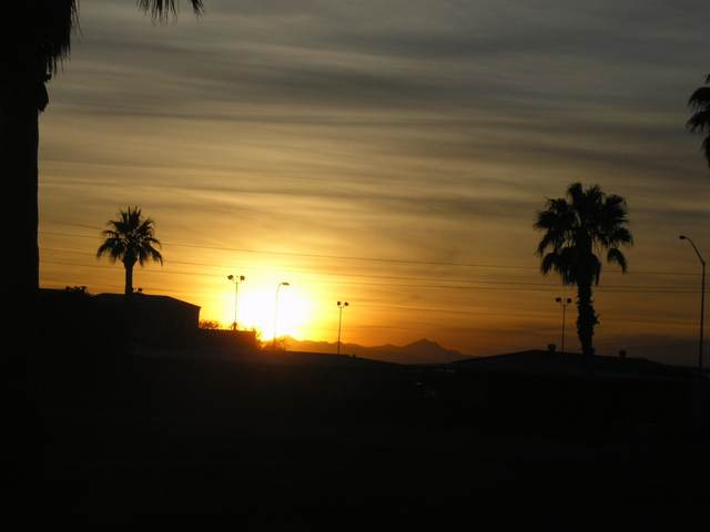 2660 N Lema Drive, Mesa, AZ 85215 (MLS #6216652) :: My Home Group