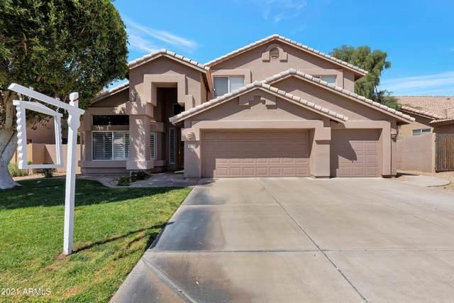 3690 E Encinas Avenue, Gilbert, AZ 85234 (MLS #6216691) :: Yost Realty Group at RE/MAX Casa Grande