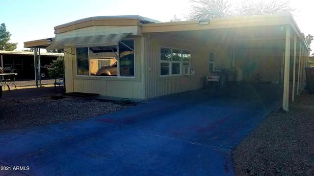 3718 N South Dakota Avenue, Florence, AZ 85132 (MLS #6216696) :: My Home Group