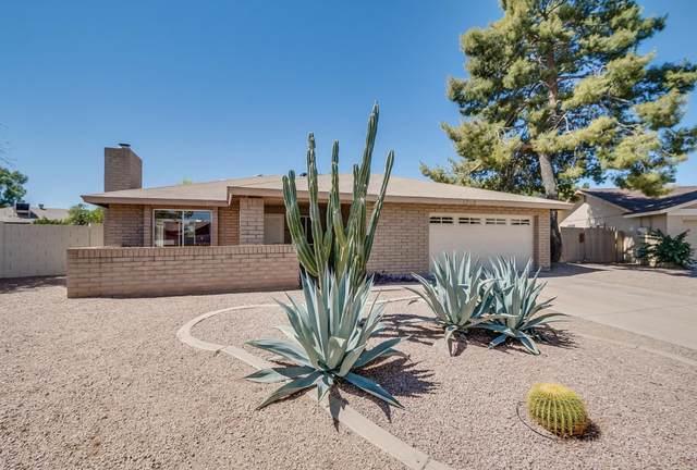 1752 S Rogers Circle, Mesa, AZ 85202 (MLS #6216785) :: Yost Realty Group at RE/MAX Casa Grande