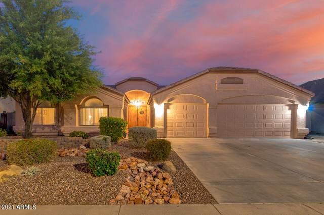 1387 S Hazel Street, Gilbert, AZ 85296 (MLS #6216822) :: Executive Realty Advisors