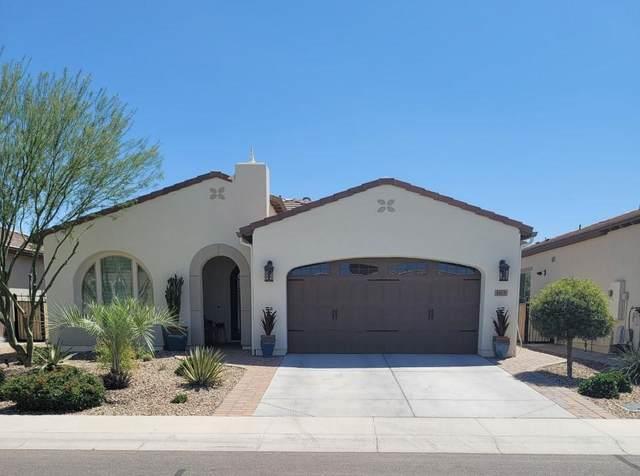 165 E Lemon Lane, San Tan Valley, AZ 85140 (MLS #6216826) :: Yost Realty Group at RE/MAX Casa Grande