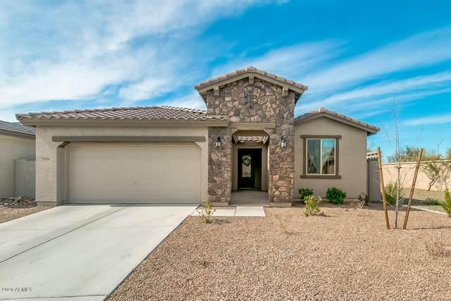 24746 N 106TH Lane, Peoria, AZ 85383 (MLS #6216858) :: TIBBS Realty