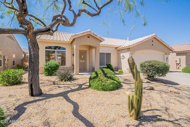 22206 N Cochise Lane, Sun City West, AZ 85375 (MLS #6216878) :: Yost Realty Group at RE/MAX Casa Grande