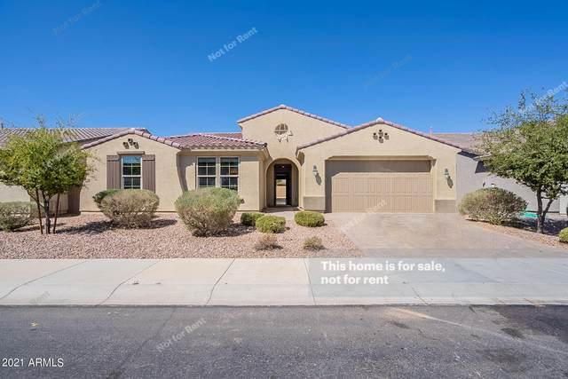 3710 E Blue Spruce Lane, Gilbert, AZ 85298 (MLS #6216954) :: Yost Realty Group at RE/MAX Casa Grande