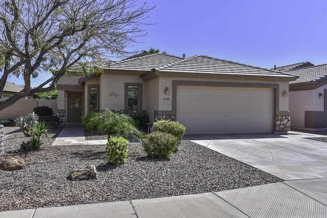 10381 W Yukon Drive, Peoria, AZ 85382 (MLS #6216981) :: Nate Martinez Team