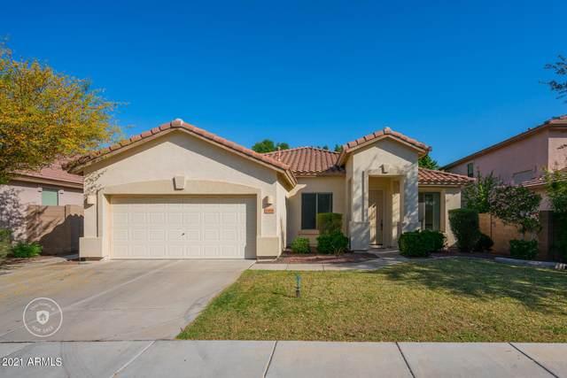 16856 W Ironwood Street, Surprise, AZ 85388 (MLS #6216982) :: Yost Realty Group at RE/MAX Casa Grande