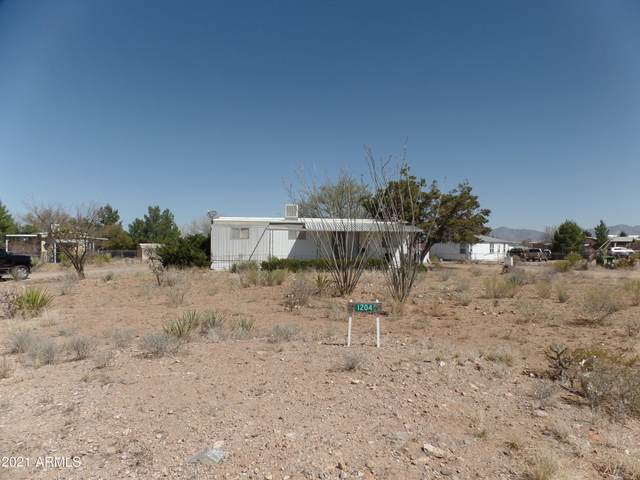 1204 N San Pedro Way, Tombstone, AZ 85638 (MLS #6217058) :: The Luna Team