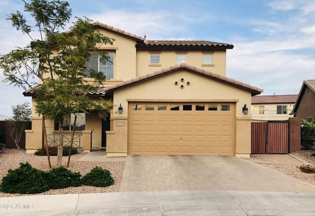 42243 N Tulip Tree Street, Queen Creek, AZ 85140 (MLS #6217108) :: Yost Realty Group at RE/MAX Casa Grande