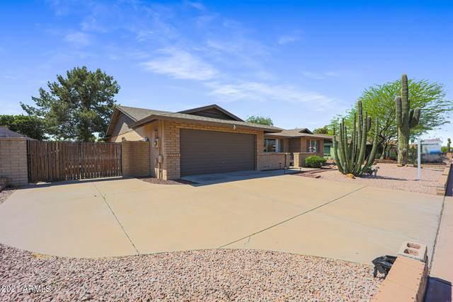5205 W Desert Cove Avenue, Glendale, AZ 85304 (MLS #6217159) :: Yost Realty Group at RE/MAX Casa Grande