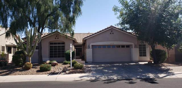 4213 E Walnut Road, Gilbert, AZ 85298 (MLS #6217168) :: Long Realty West Valley