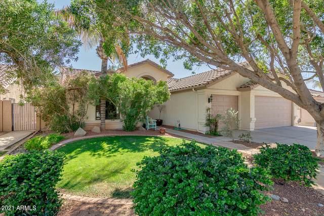 1243 W Lantana Drive, Chandler, AZ 85248 (MLS #6217209) :: Yost Realty Group at RE/MAX Casa Grande