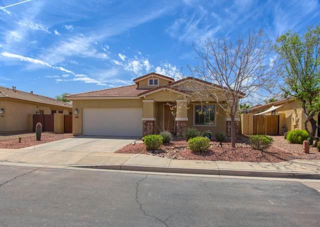 36307 W Marin Avenue, Maricopa, AZ 85138 (MLS #6217212) :: Yost Realty Group at RE/MAX Casa Grande