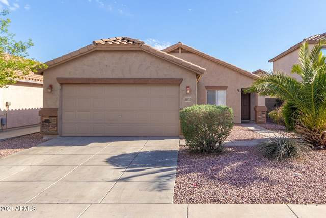 11627 W Oglesby Avenue, Youngtown, AZ 85363 (MLS #6217225) :: Yost Realty Group at RE/MAX Casa Grande