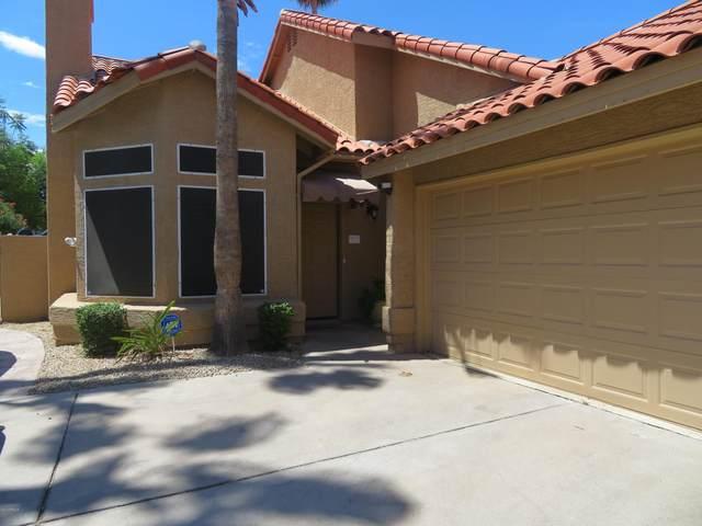 9261 E Sutton Drive, Scottsdale, AZ 85260 (MLS #6217256) :: BVO Luxury Group