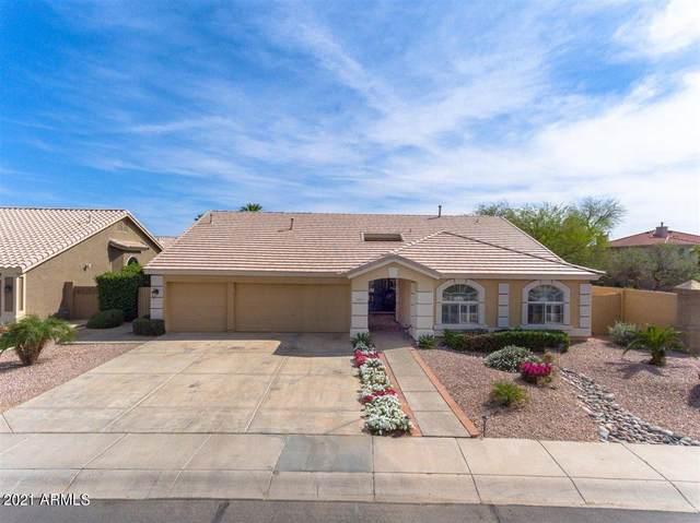 2659 E Pinto Drive, Gilbert, AZ 85296 (MLS #6217405) :: Yost Realty Group at RE/MAX Casa Grande