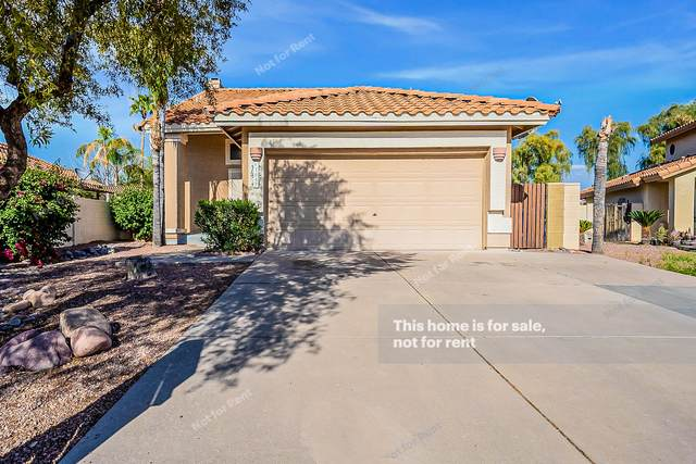 1057 N Arroya, Mesa, AZ 85205 (MLS #6217444) :: Yost Realty Group at RE/MAX Casa Grande