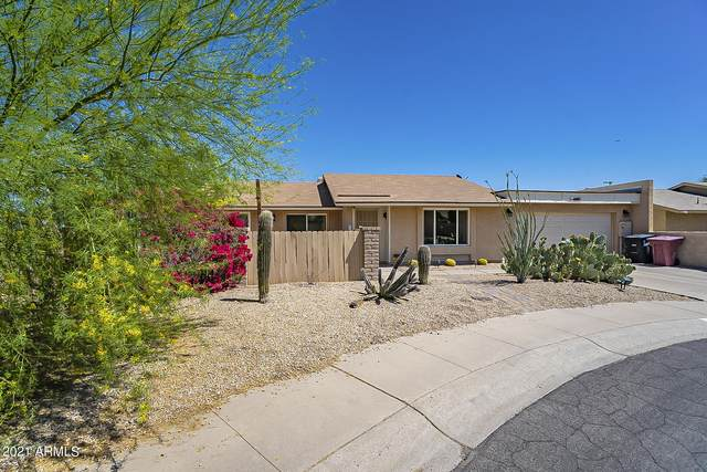 1065 N 86TH Place, Scottsdale, AZ 85257 (MLS #6217447) :: Yost Realty Group at RE/MAX Casa Grande