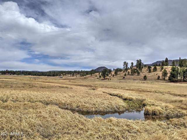 000 County Road 2105, Alpine, AZ 85920 (MLS #6217452) :: Devor Real Estate Associates