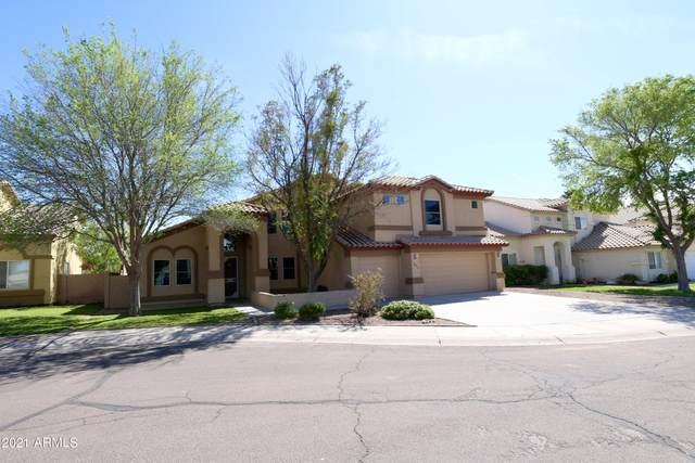 16021 W Sherman Street, Goodyear, AZ 85338 (MLS #6217514) :: The Daniel Montez Real Estate Group