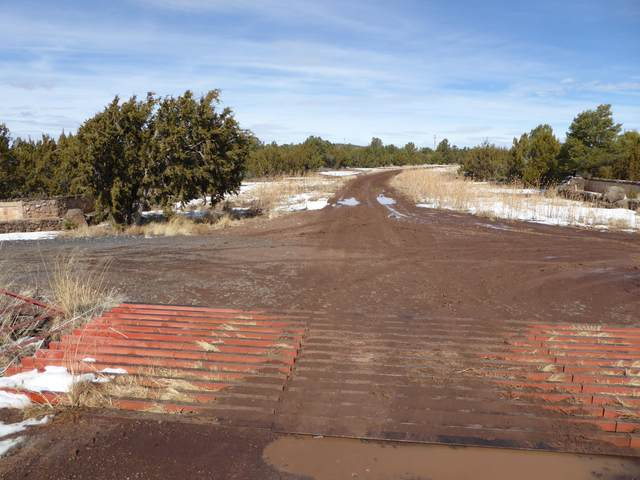 -- Co Rd 3139, Vernon, AZ 85940 (MLS #6217526) :: Howe Realty