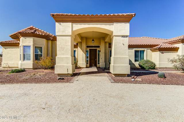 16232 W Saguaro View Drive, Surprise, AZ 85387 (MLS #6217544) :: Devor Real Estate Associates