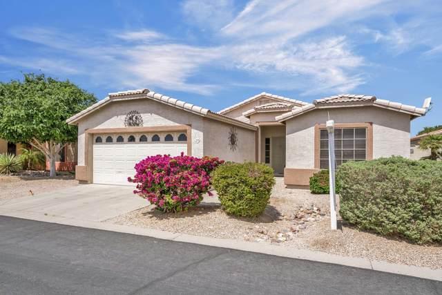 2101 S Meridian Road #329, Apache Junction, AZ 85120 (MLS #6217600) :: Long Realty West Valley
