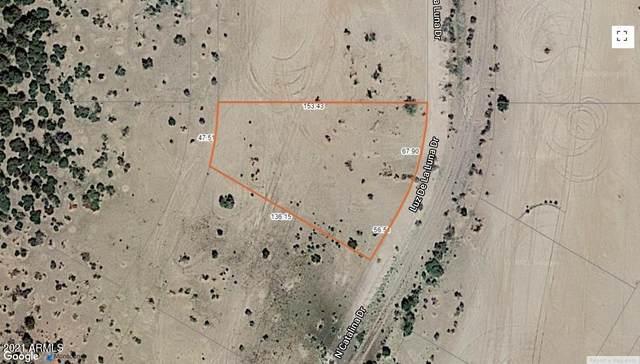 3640 N Luna Drive, Eloy, AZ 85131 (MLS #6217661) :: The Riddle Group