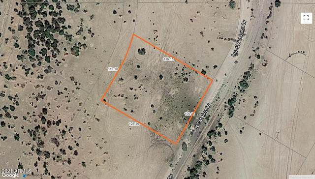 3630 N Luna Drive, Eloy, AZ 85131 (MLS #6217664) :: The Riddle Group