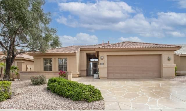 3349 N 146TH Drive, Goodyear, AZ 85395 (MLS #6217676) :: Yost Realty Group at RE/MAX Casa Grande