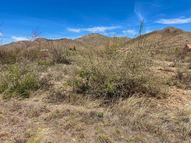 Tbd 0.98 Ac W. Cameo Street Lot, Bisbee, AZ 85603 (MLS #6217719) :: BVO Luxury Group