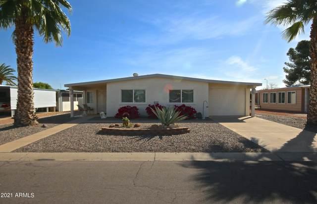8925 E Sun Lakes Boulevard S, Sun Lakes, AZ 85248 (MLS #6217763) :: My Home Group