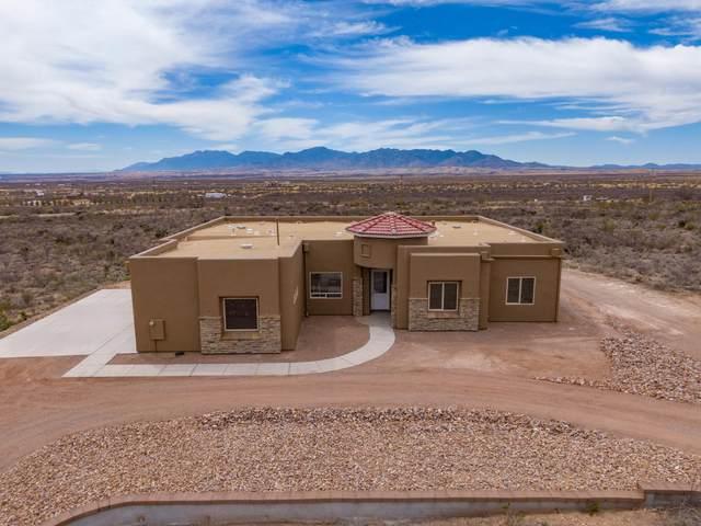 2238 N Carlson Canyon Drive, Whetstone, AZ 85616 (MLS #6217765) :: Yost Realty Group at RE/MAX Casa Grande